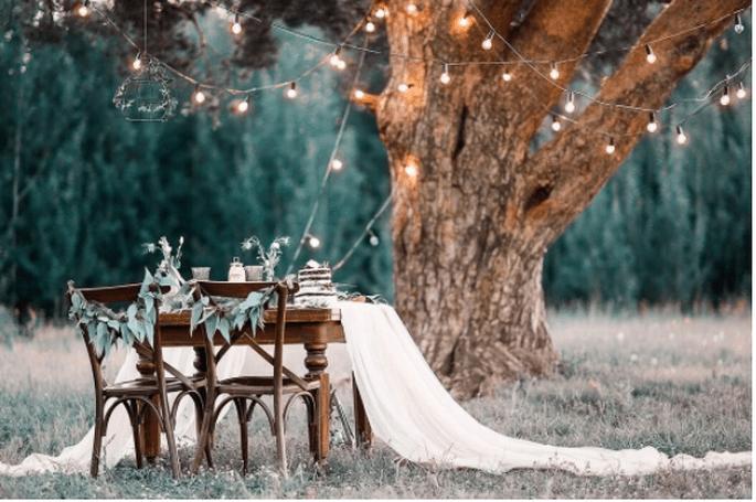Tisch für 4 Personen unter Baum