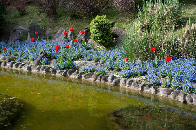 Lo splendido manto fiorito del Giardino. - Foto: Marilena Mura