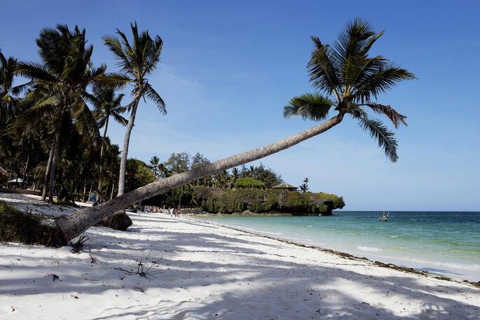 Preciosa playa con palmeras en Kenia.
