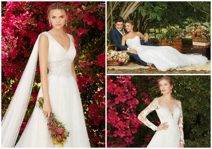 Casablanca Secret Garden Collection 2017