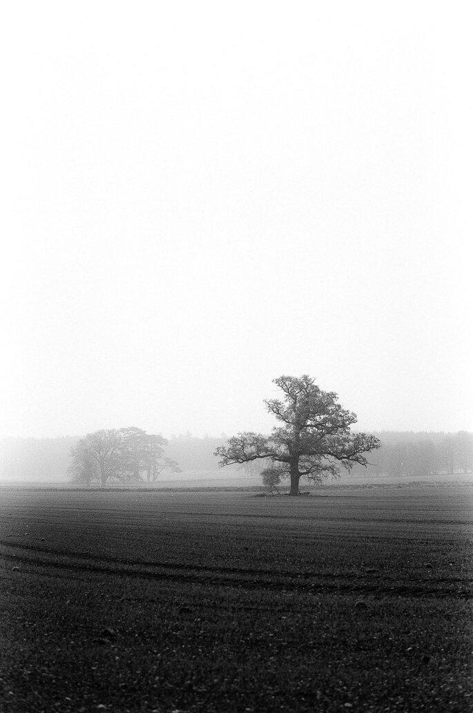Lutterbach Fotografia