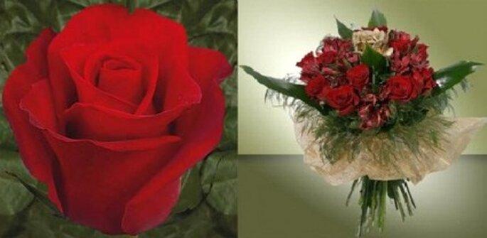 El rojo intenso expresa amor profundo.
