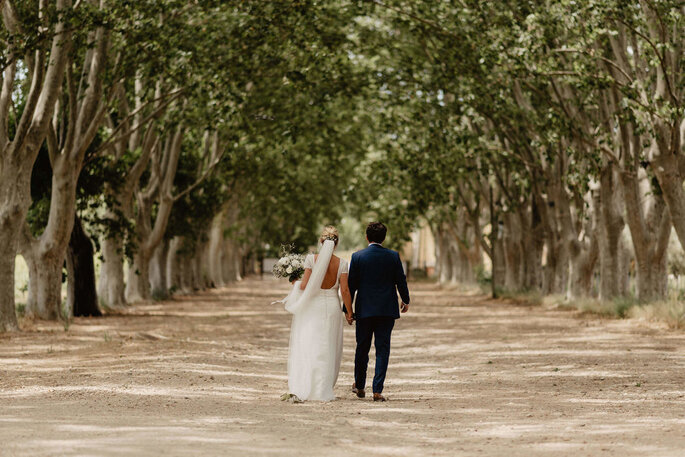 Un couple de mariés dans l'allée bordée de cèdres, à la Magnanerie de Saint-Isidore