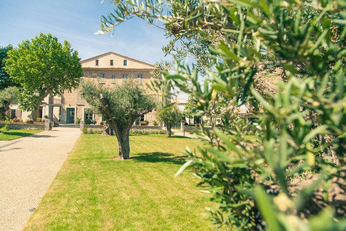 Lieu de réception pour un mariage au milieu des oliviers