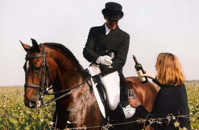 foto cavalos 1