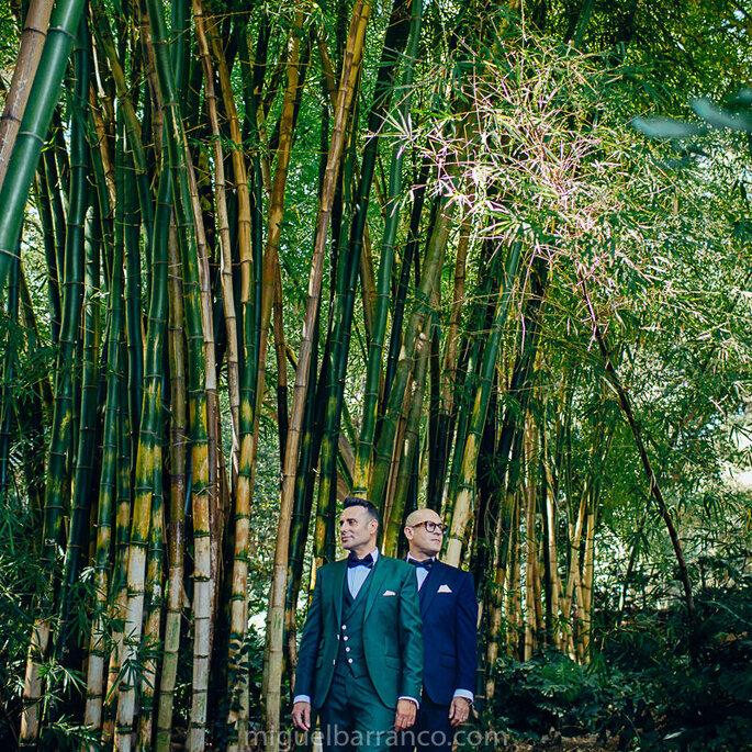 Fotógrafo de boda Málaga