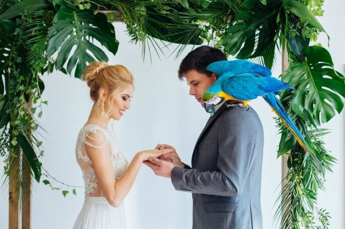 Свадебный фотограф Татьяна Хардова