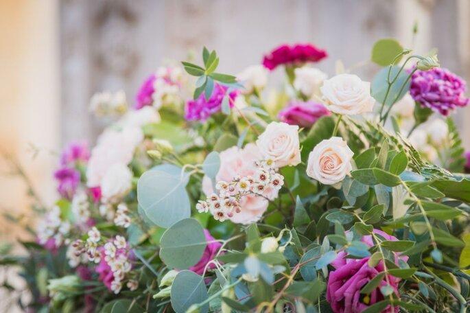 Foto: Flores Louras