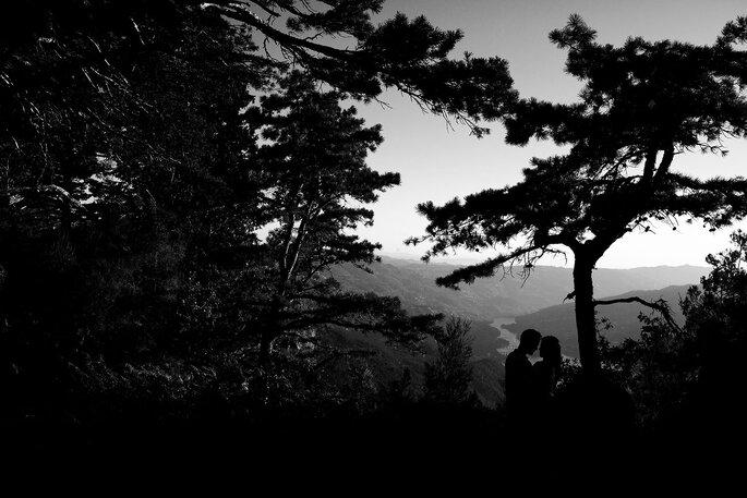 Paulo Castro Photography