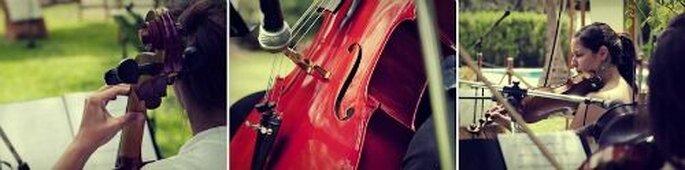 Mit Musik geht alles besser! - Foto: Pedro Lampertti AlfaMas