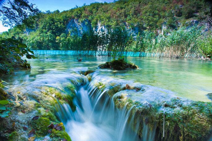 Image via Shutterstock: mironov