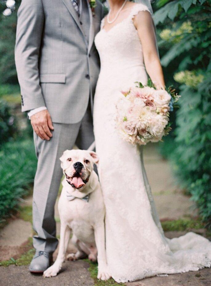 6 tips para incluir a tu mascota en la boda - Odalys Mendez Photography