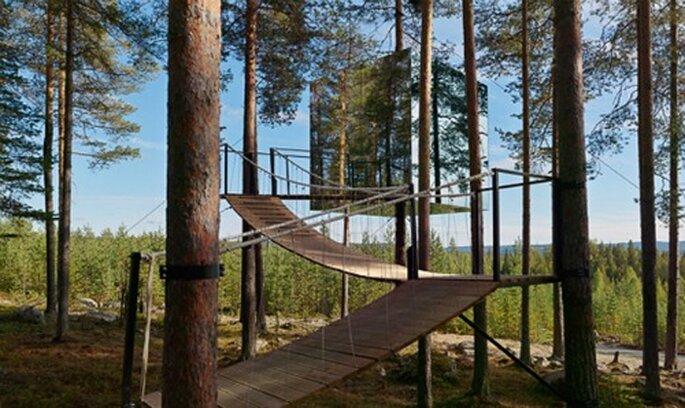 Des hôtels de qualité, validés et labellisés, telle est la vocation de Splendia - Tree-Hotel en Suède