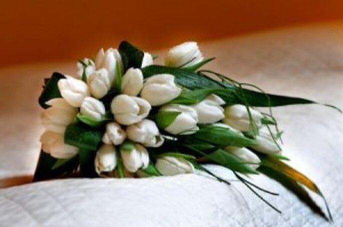Bouquet di tulipan bianchi
