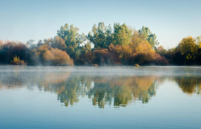 Foto vía Shutterstock: Fotoeventis