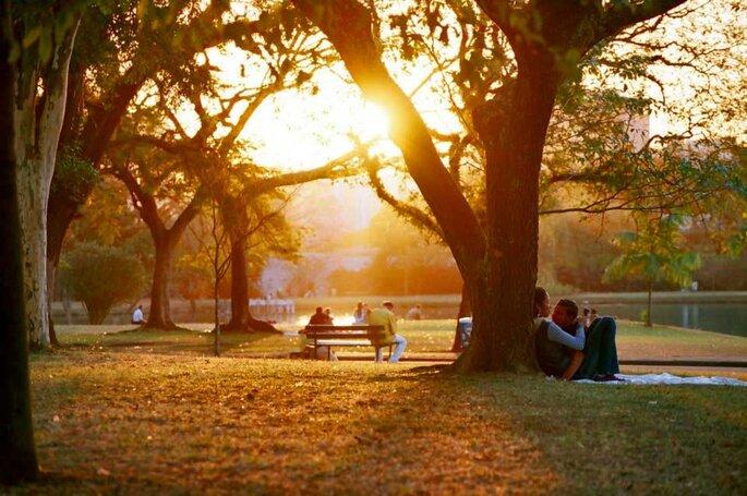 Foto: Parque do Ibirapuera