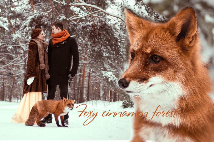 Foxy cinnamon forest-1