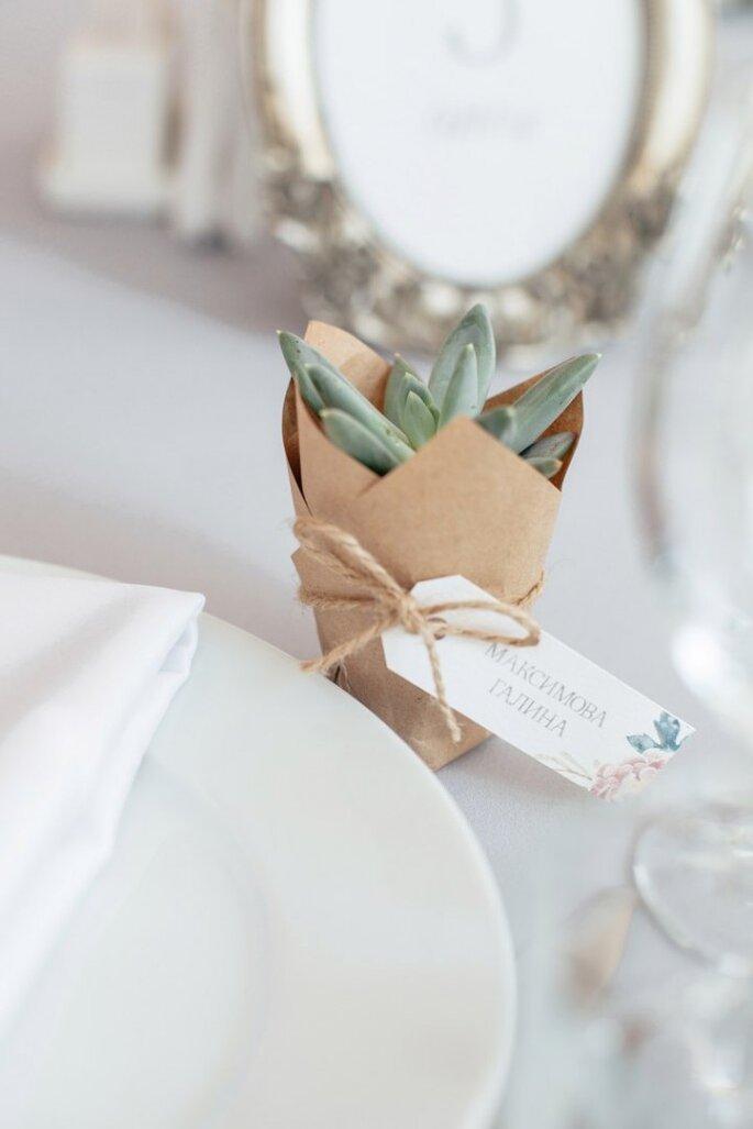 Кактус. Fleur de Vanille