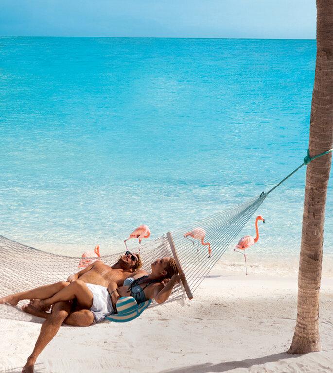 Hermosas playas y balnearios para que te relajes con tu pareja. Foto: www.es.aruba.com