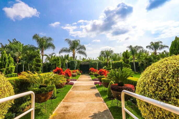Jardín Paraíso del Lago