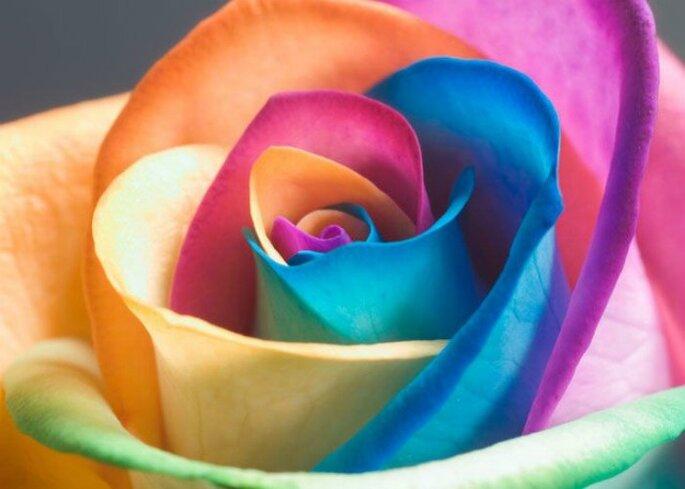 Scopri con Zankyou il significato dei colori per scegliere quello più adatto al tuo sito web o, perché no, alle tue nozze! Foto Repubblica.it