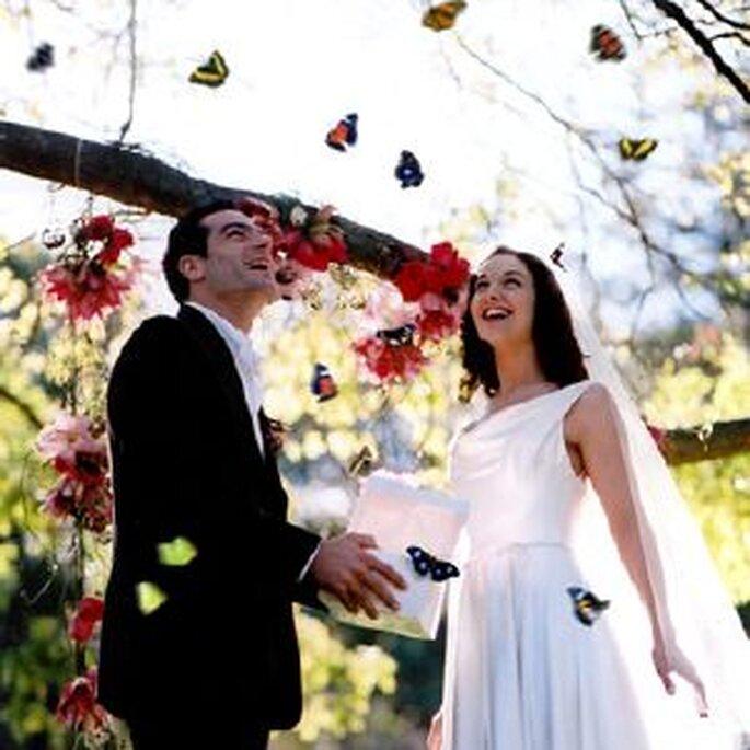 suelta de mariposas boda