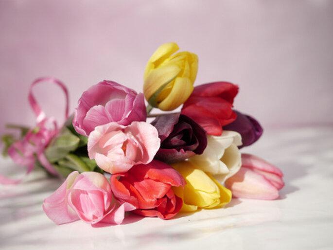Tulpen als Brautstrauss - ungewöhnlich, aber selten schön! Foto: gänseblümchen / pixelio.de