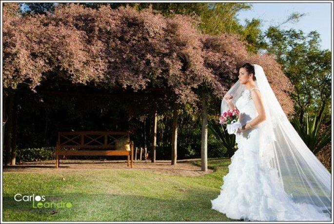 Sesión de fotografía de boda en el parque. Foto de Carlos Leandro