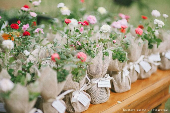 Vasos com mini rosas