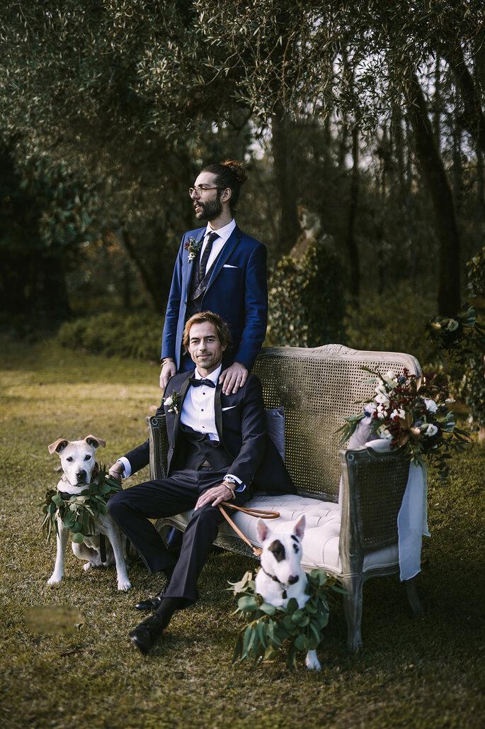 noivos gay sentados num cadeirão vintage num jardim com cães
