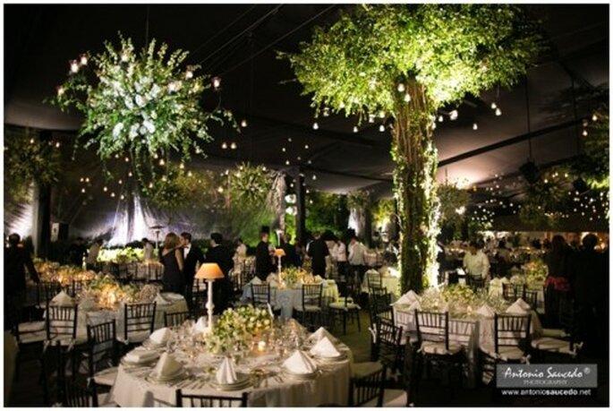 El Jardín Mayita es una gran locación para tu boda - Foto Antonio Saucedo
