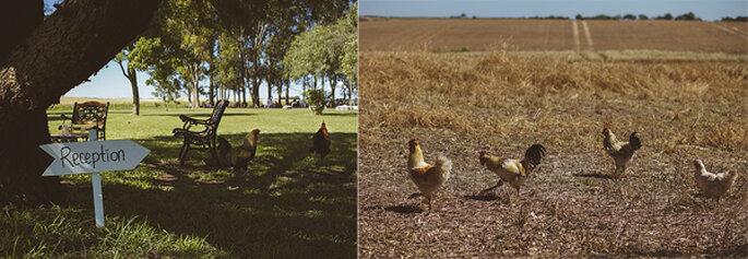 Boda en un campo de Uruguay. Fotografiarte Fine Art Photography