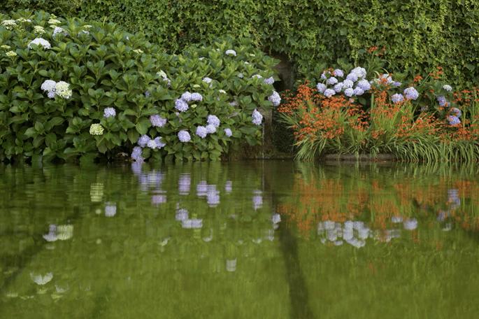 lago Quinta da Cerca