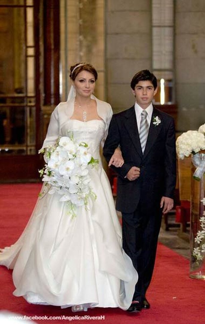 La gaviota con su vestido de novia