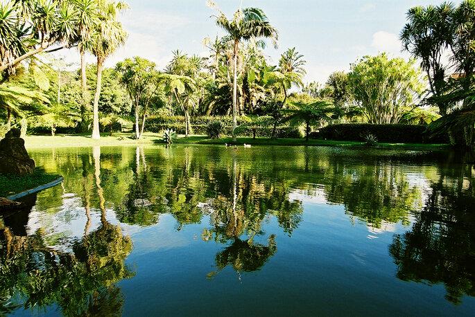 Quinta da Nasce- Água