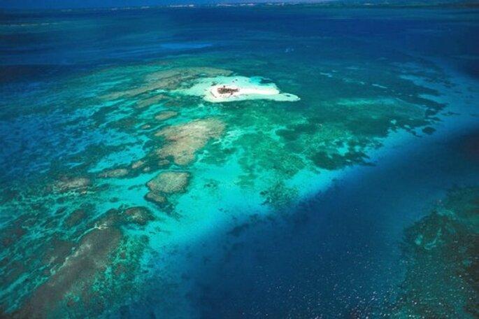 Mariage suivi d'un séjour en amoureux en Guadeloupe : pure folie ! - Photo : Mariage de Noces