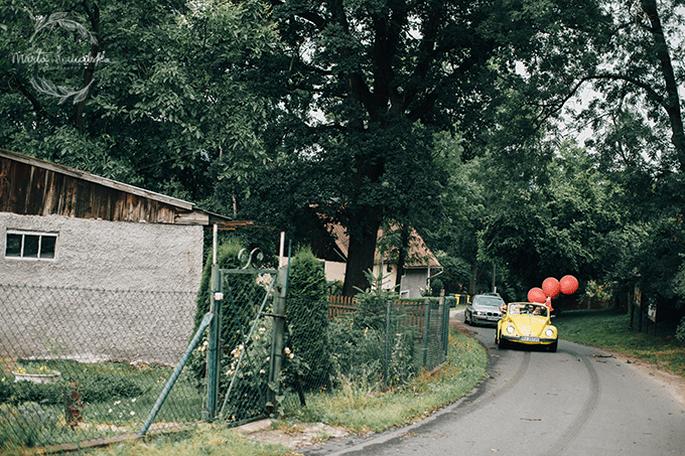 Marta Kowalska Fotografia