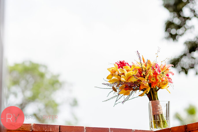Mandacaru Flores