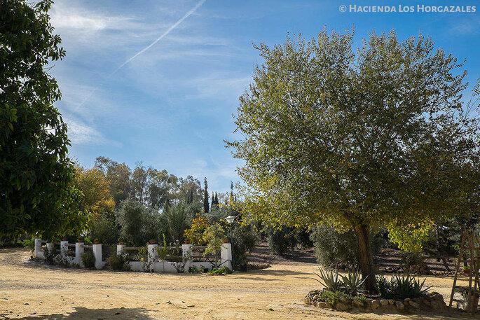 Hacienda Los Horgazales