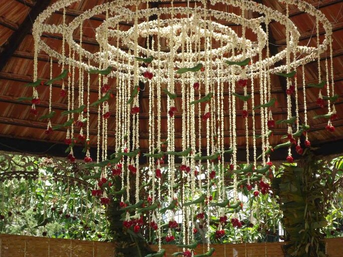 Photo: The Tamarind Tree.