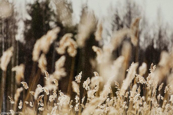 Фотограф Алексей Гайдин