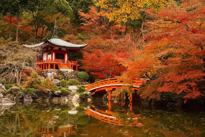 Giappone, foto via Facebook
