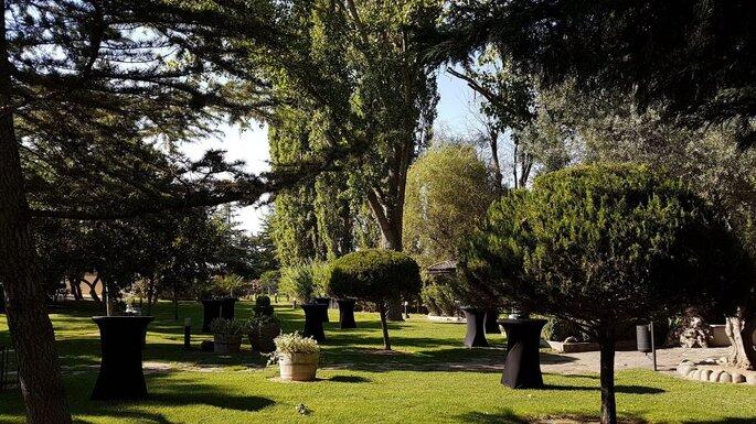 Jardin el Botero