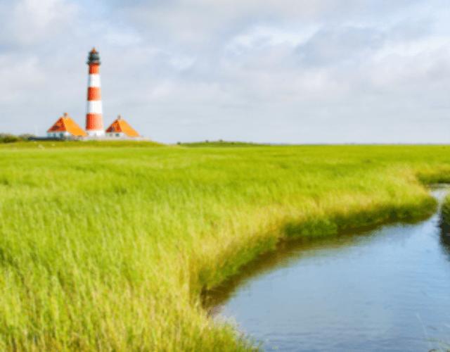 Het beste voor uw bruiloft in Friesland
