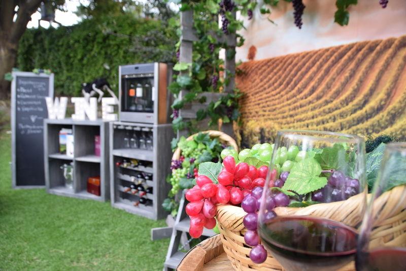 Vinos Vita Wine Station