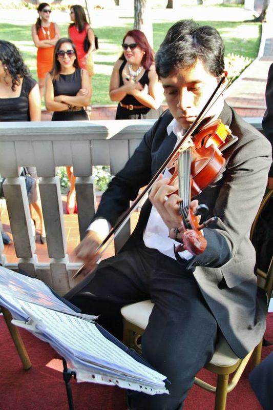 Coros y Violines Strauss
