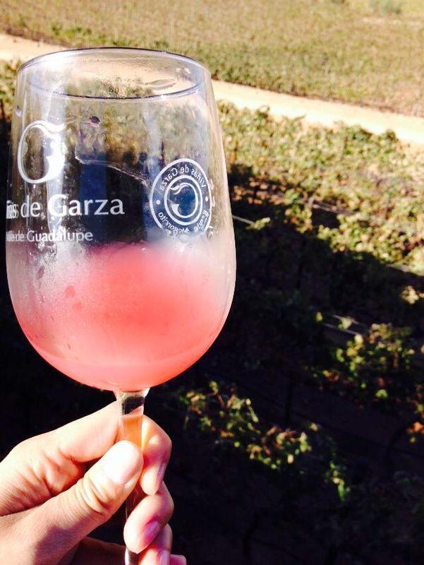 Viñas de Garza