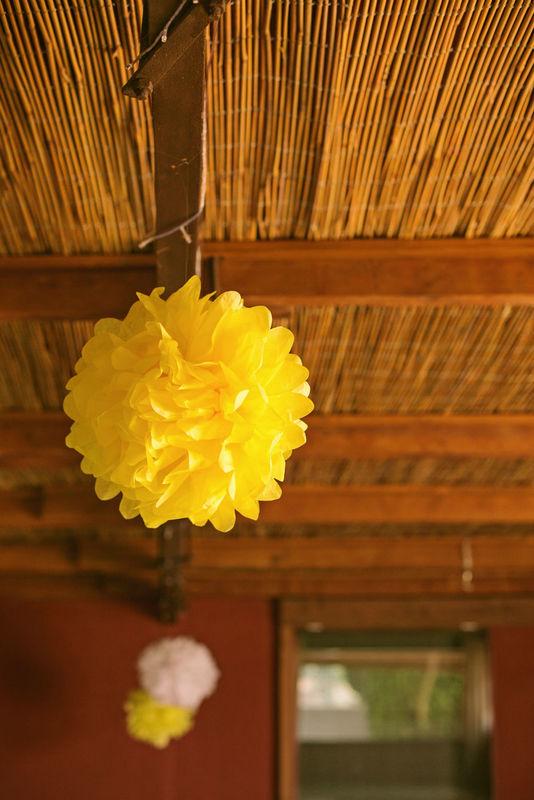 Dandelion Events Decoración Pompones