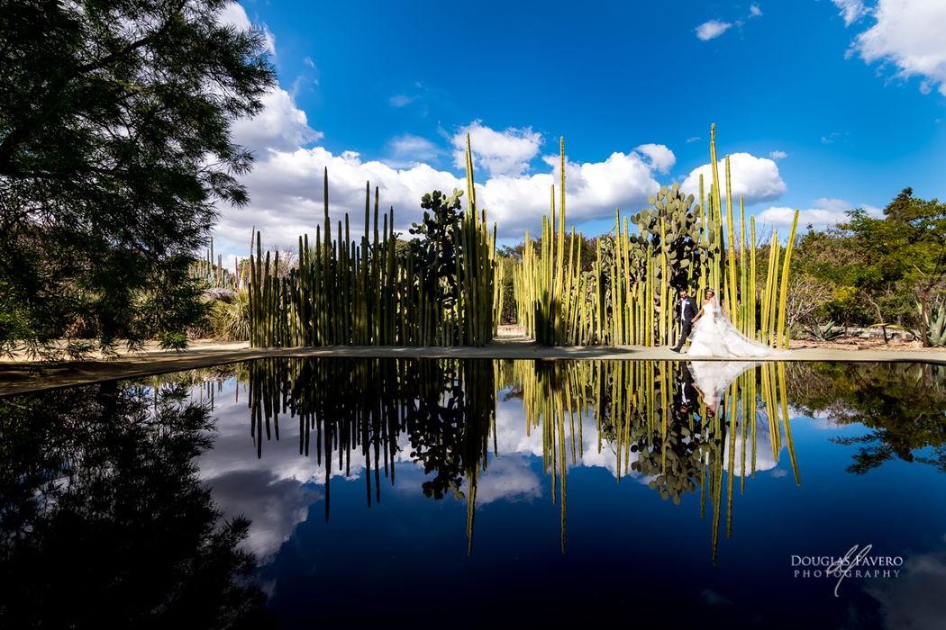 Douglas Favero Photography