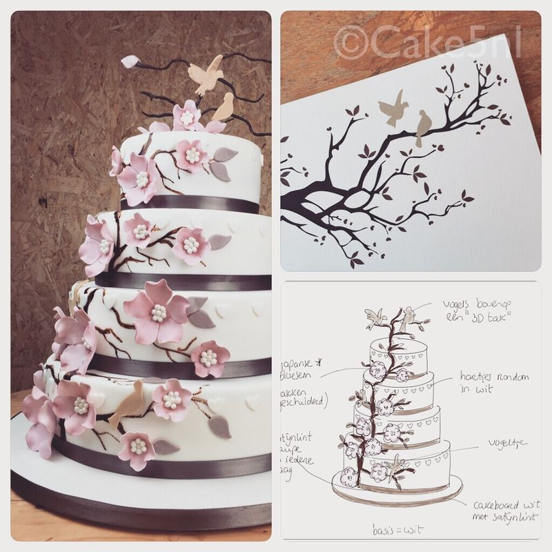 Cake 5 Exclusive Cakes